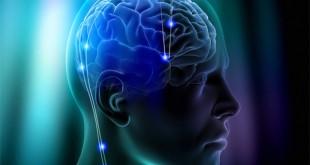 La corrente elettrica contribuisce a ripulire i neuroni