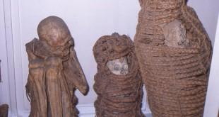 Mummie di Cuzco dono del Mazzei 1877
