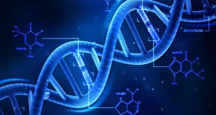 DNA umano_bioetica