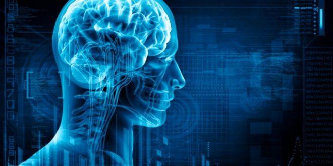 Uno studio svela le basi neurali del senso di responsabilità