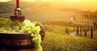 Organizzare una vacanza food: le app indispensabili