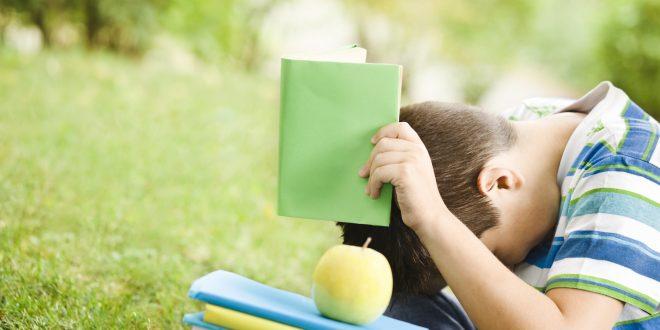 Una ricerca sulla comorbilità nella dislessia con misure comportamentali e risonanza magnetica funzionale riporta la lettura al centro dell'attenzione degli scienziati.