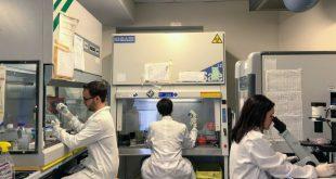 PreCanMed: dal Friuli Venezia Giulia al Tirolo la ricerca sul cancro