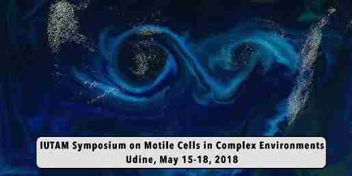 Il primo simposio internazionale sulla motilità cellulare nei sistemi fluidi complessi