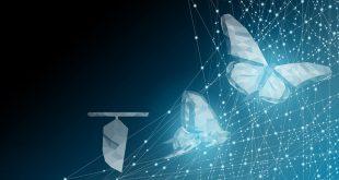 LIUC Business School presenta il Master Executive Digital Metamorphosis